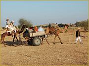 Desert Camps Rajasthan,  India