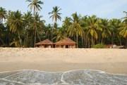Beach House,  Beach Flower Beach House
